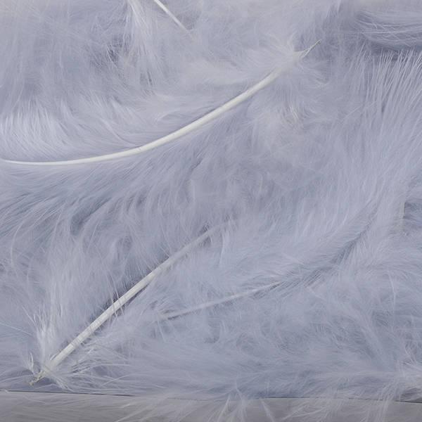 Dekorationfjädrar, ca. 50 st