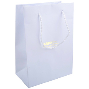 Bulk Buy: Paper Carrier Bag with Handle, Large