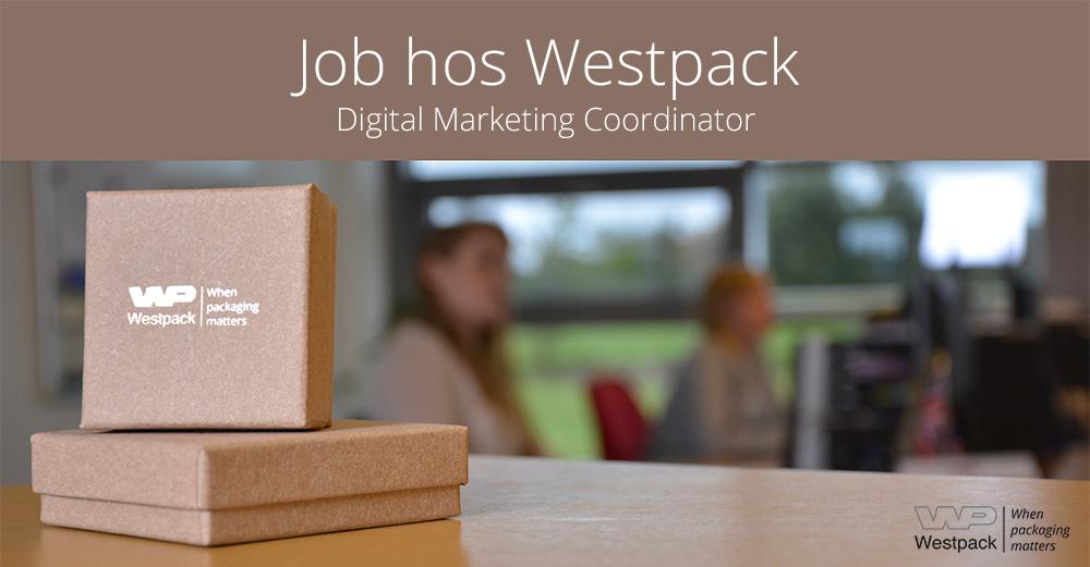 digitalmarketingcoordinator_01